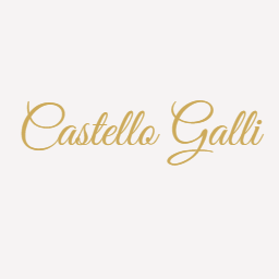 castello galli logo 2